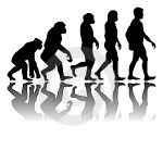 evolution of the hexayurt-buytape.com